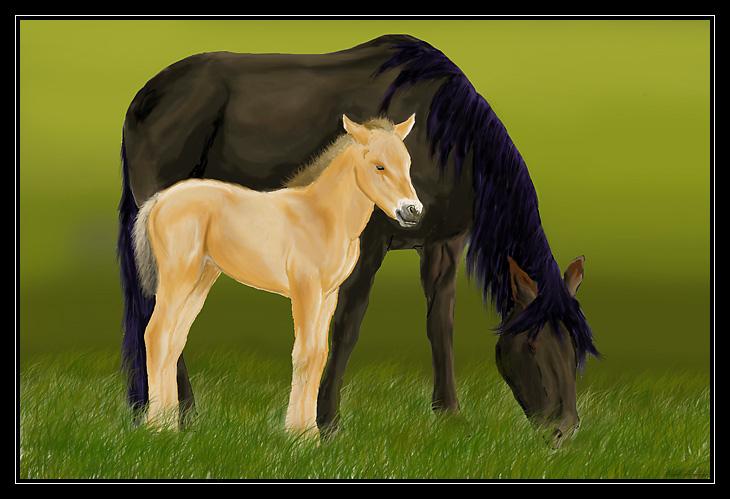 les chevaux de ma soeur a l'ordi Chevaux-fini