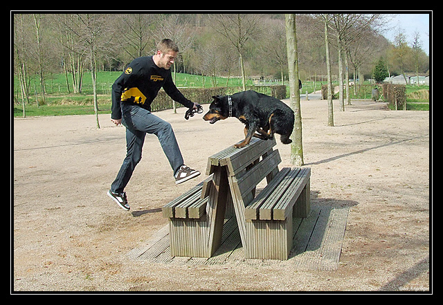 sortie fufus chiens DSCF7254